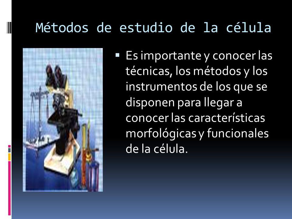 Métodos de estudio de la célula Es importante y conocer las técnicas, los métodos y los instrumentos de los que se disponen para llegar a conocer las