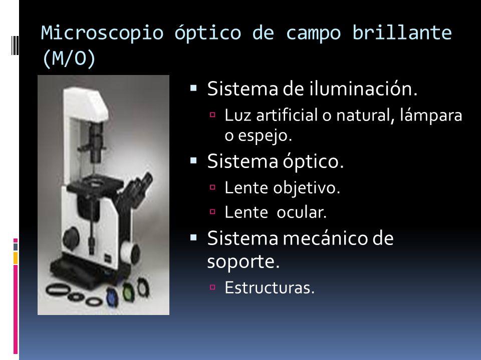 Microscopio óptico de campo brillante (M/O) Sistema de iluminación. Luz artificial o natural, lámpara o espejo. Sistema óptico. Lente objetivo. Lente