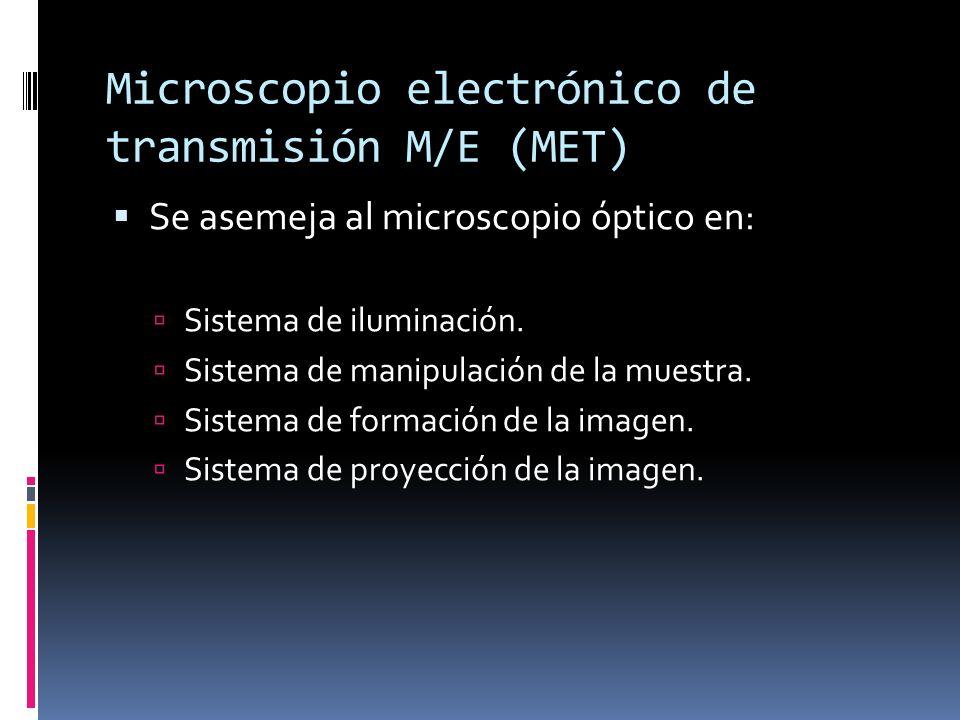 Microscopio electrónico de transmisión M/E (MET) Se asemeja al microscopio óptico en: Sistema de iluminación. Sistema de manipulación de la muestra. S