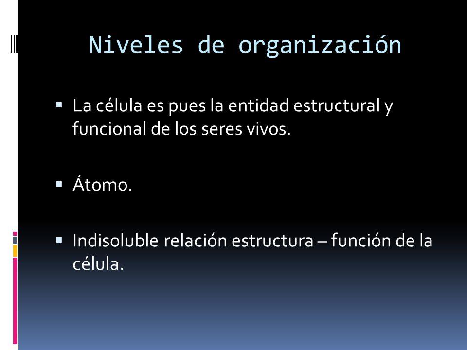 Niveles de organización La célula es pues la entidad estructural y funcional de los seres vivos. Átomo. Indisoluble relación estructura – función de l
