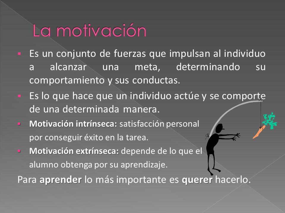 Es un conjunto de fuerzas que impulsan al individuo a alcanzar una meta, determinando su comportamiento y sus conductas.