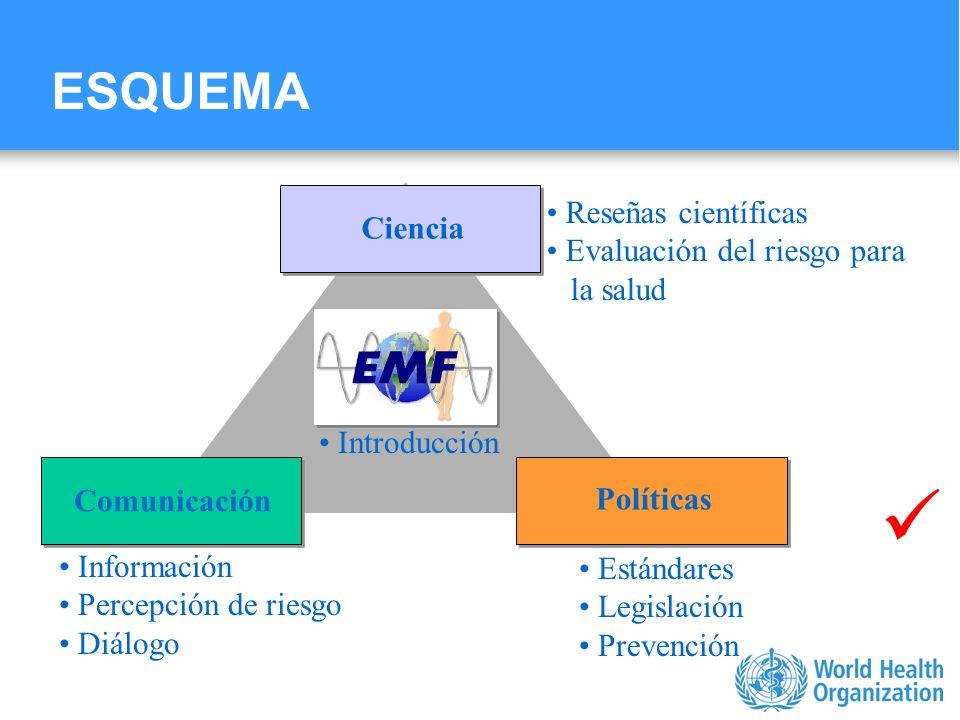 Characterizing evidence in EMF risk assessment, Berlin, 4-5 May 2006 ESQUEMA Introducción Ciencia Reseñas científicas Evaluación del riesgo para la sa