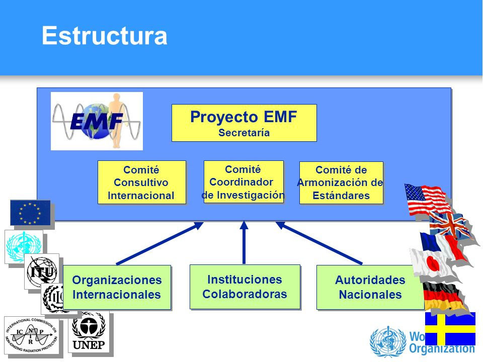 Characterizing evidence in EMF risk assessment, Berlin, 4-5 May 2006 EMF: ¿un riesgo ambiental.