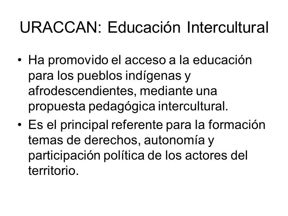 URACCAN: Educación Intercultural Ha promovido el acceso a la educación para los pueblos indígenas y afrodescendientes, mediante una propuesta pedagógica intercultural.