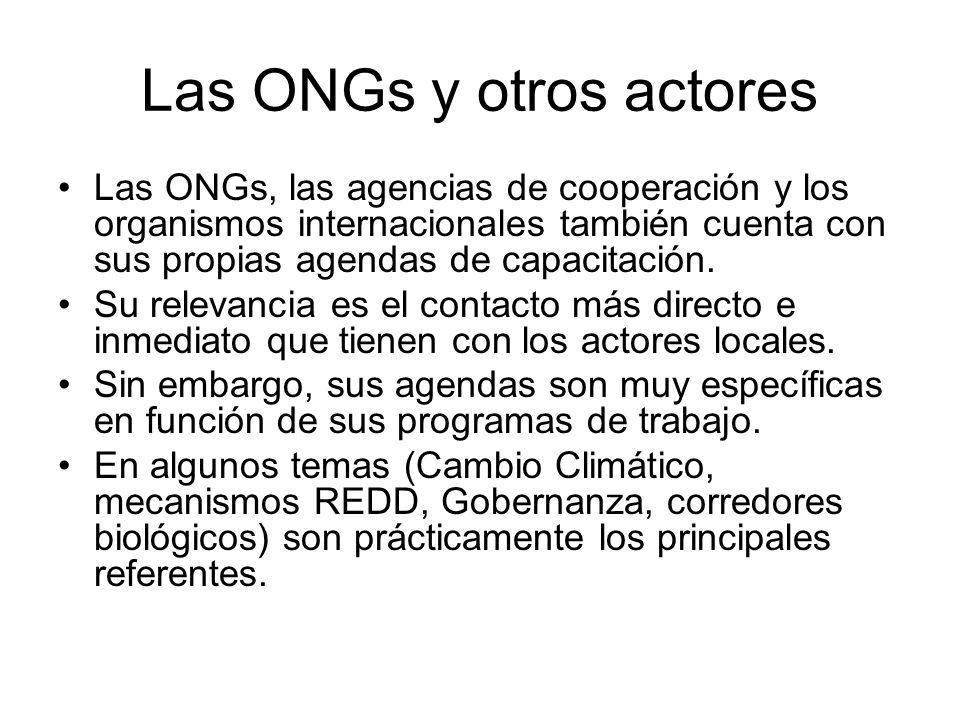 Las ONGs y otros actores Las ONGs, las agencias de cooperación y los organismos internacionales también cuenta con sus propias agendas de capacitación.