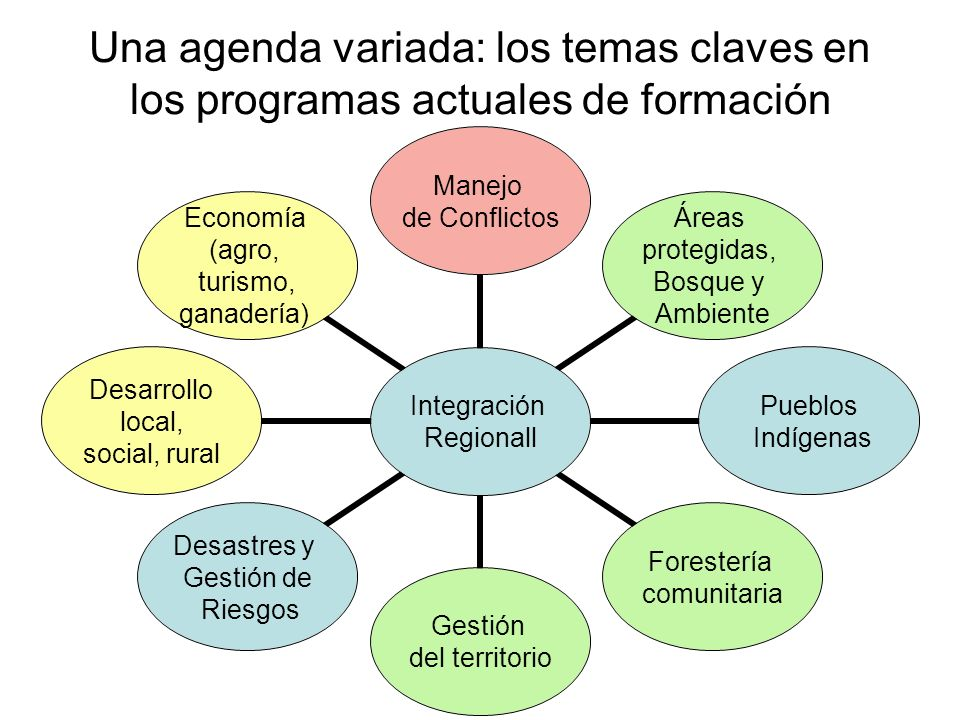 Una agenda variada: los temas claves en los programas actuales de formación Integración Regionall Manejo de Conflictos Áreas protegidas, Bosque y Ambiente Pueblos Indígenas Forestería comunitaria Gestión del territorio Desastres y Gestión de Riesgos Desarrollo local, social, rural Economía (agro, turismo, ganadería)