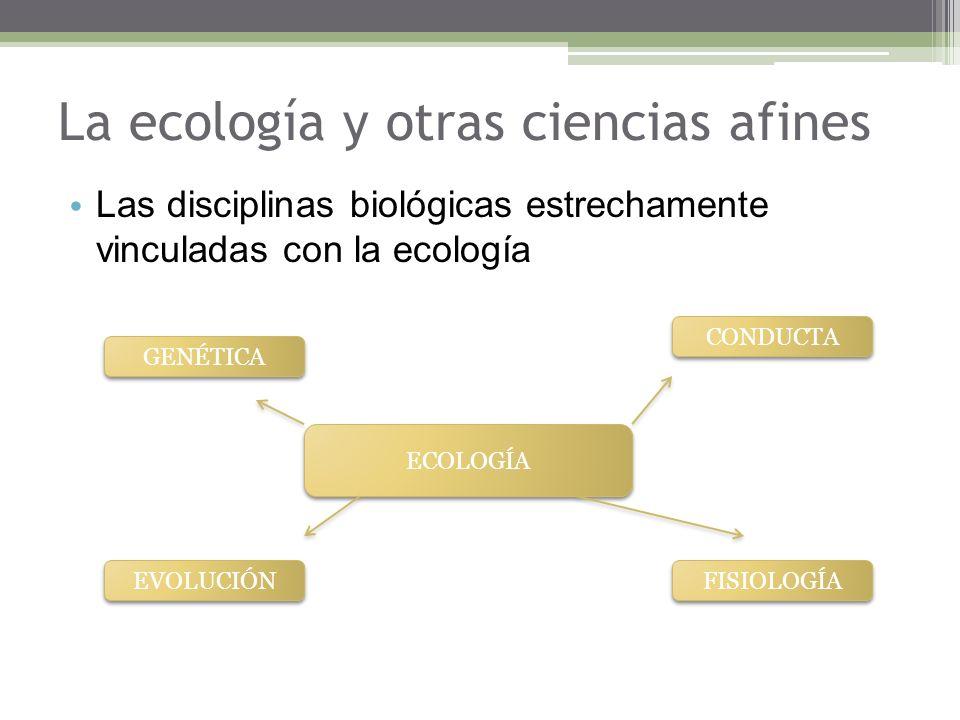 La ecología y otras ciencias afines Las disciplinas biológicas estrechamente vinculadas con la ecología ECOLOGÍA GENÉTICA EVOLUCIÓN FISIOLOGÍA CONDUCTA