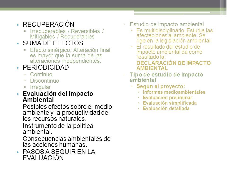 RECUPERACIÓN Irrecuperables / Reversibles / Mitigables / Recuperables SUMA DE EFECTOS Efecto sinérgico: Alteración final es mayor que la suma de las alteraciones independientes.