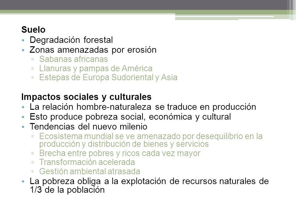 Suelo Degradación forestal Zonas amenazadas por erosión Sabanas africanas Llanuras y pampas de América Estepas de Europa Sudoriental y Asia Impactos s
