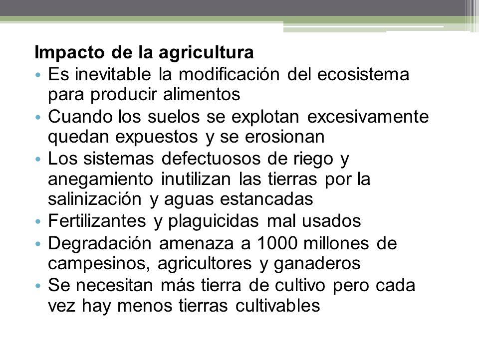 Impacto de la agricultura Es inevitable la modificación del ecosistema para producir alimentos Cuando los suelos se explotan excesivamente quedan expu