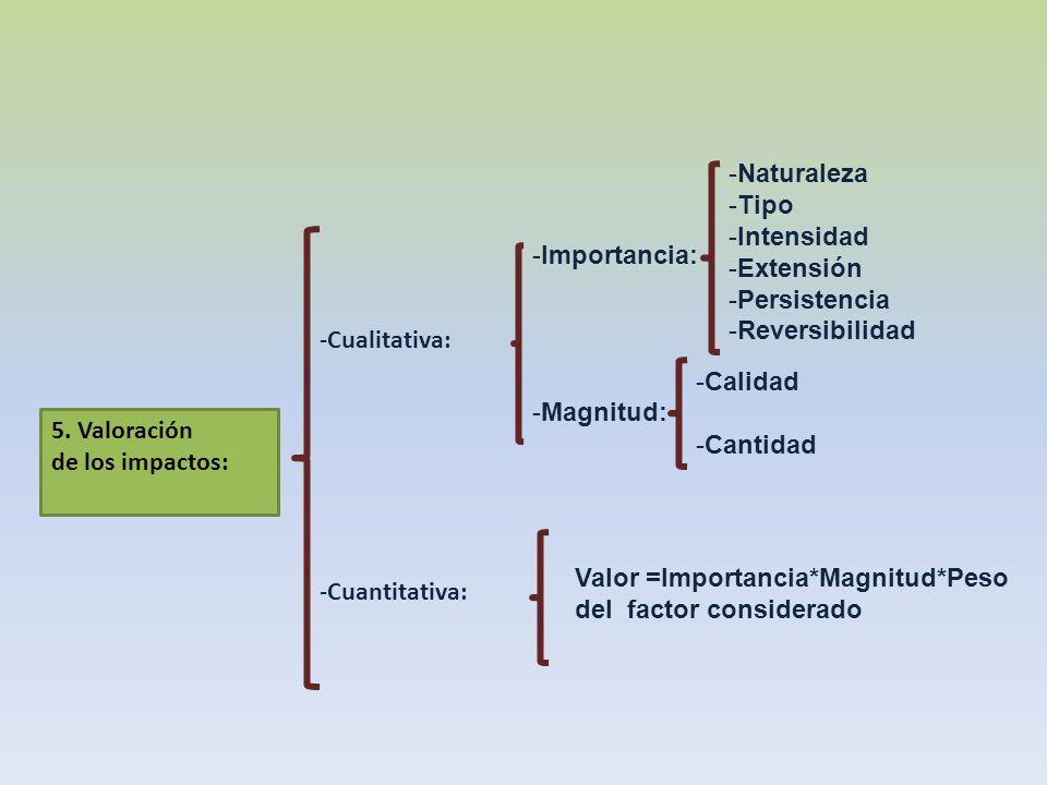 -Cualitativa: -Cuantitativa: 5. Valoración de los impactos: -Importancia: -Magnitud: -Naturaleza -Tipo -Intensidad -Extensión -Persistencia -Reversibi