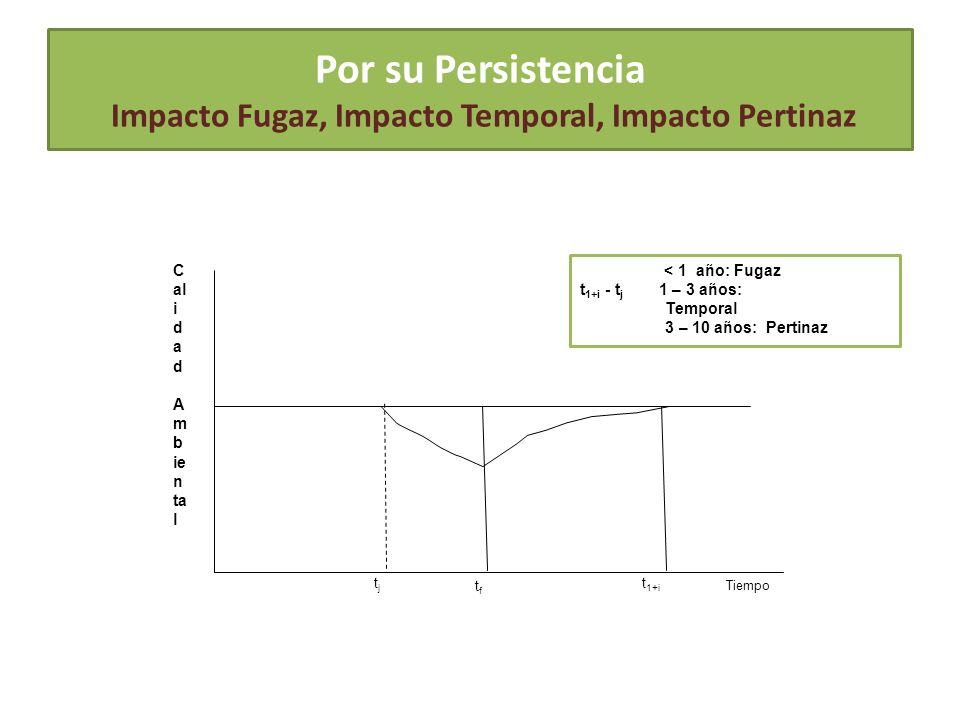 Por su Persistencia Impacto Fugaz, Impacto Temporal, Impacto Pertinaz C al i d a d A m b ie n ta l Tiempo t 1+i tjtj < 1 año: Fugaz t 1+i - t j 1 – 3