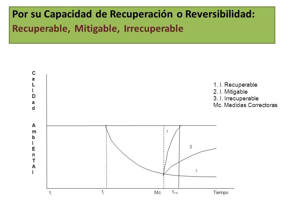 CaLIDad AmbIEnTAlCaLIDad AmbIEnTAl Tiempo t 1+i tjtj 3 2 1 1. I. Recuperable 2. I. Mitigable 3. I. Irrecuperable Mc. Medidas Correctoras titi Mc Por s