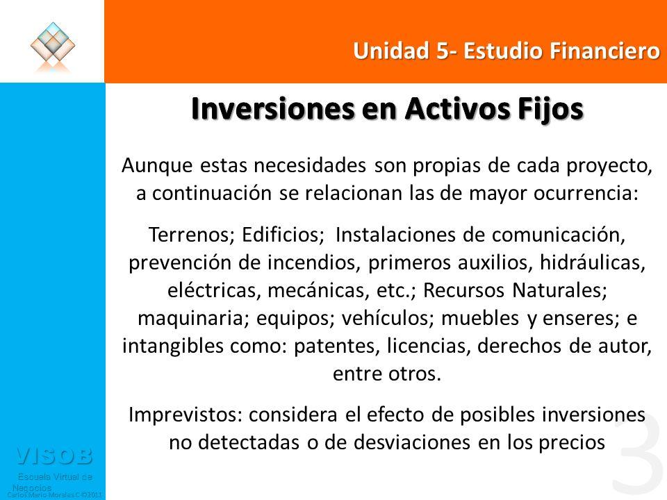 VISOB Escuela Virtual de Negocios Escuela Virtual de Negocios Carlos Mario Morales C ©2011 5