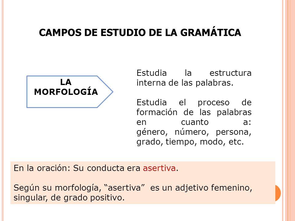 Estudia la estructura interna de las palabras. Estudia el proceso de formación de las palabras en cuanto a: género, número, persona, grado, tiempo, mo
