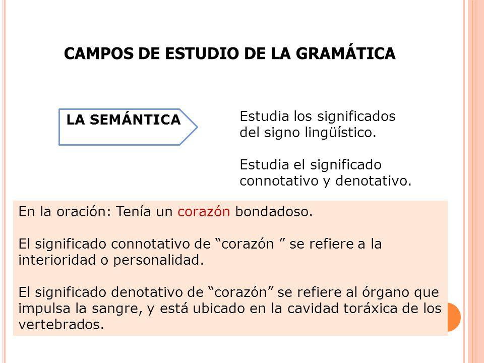 Otros campos del estudio de la gramática: PARA EL ESTUDIO DE LA GRAMÁTICA Estudio del fonema.
