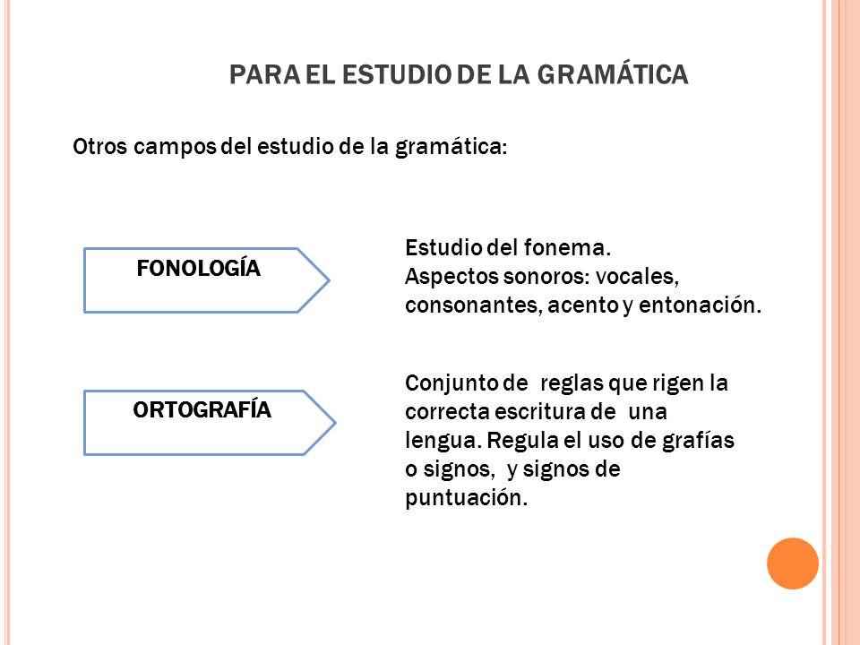 Otros campos del estudio de la gramática: PARA EL ESTUDIO DE LA GRAMÁTICA Estudio del fonema. Aspectos sonoros: vocales, consonantes, acento y entonac