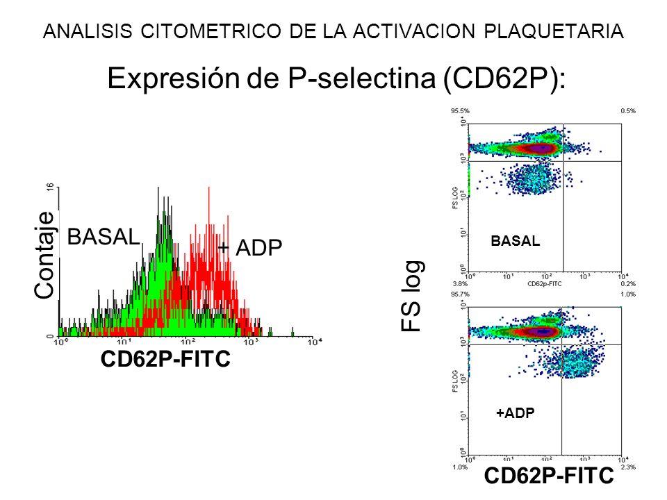 Expresión de P-selectina (CD62P): CD62P-FITC + ADP BASAL +ADP BASAL FS log CD62P-FITC Contaje