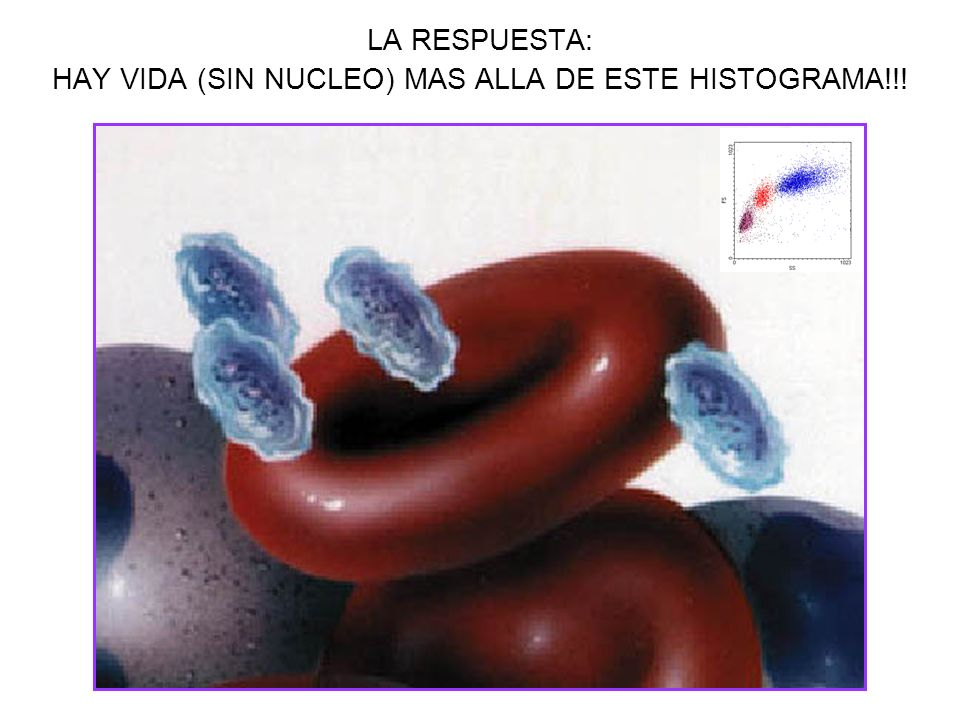 LA RESPUESTA: HAY VIDA (SIN NUCLEO) MAS ALLA DE ESTE HISTOGRAMA!!!