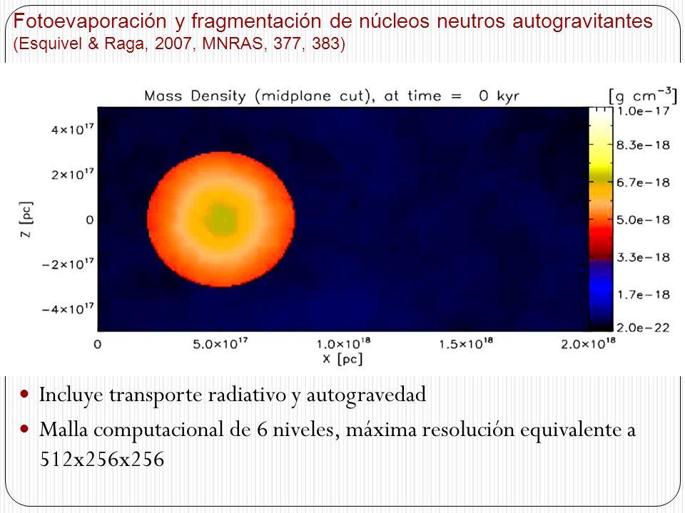 Fotoevaporación y fragmentación de núcleos neutros autogravitantes (Esquivel & Raga, 2007, MNRAS, 377, 383) Incluye transporte radiativo y autograveda