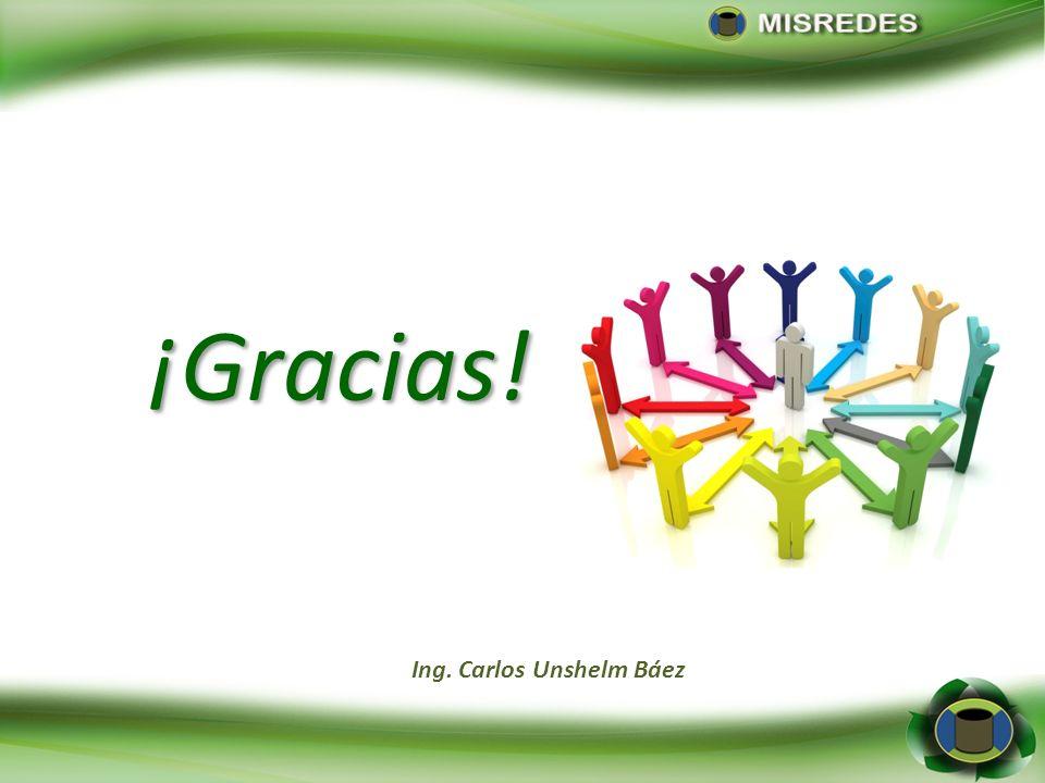¡Gracias! Ing. Carlos Unshelm Báez