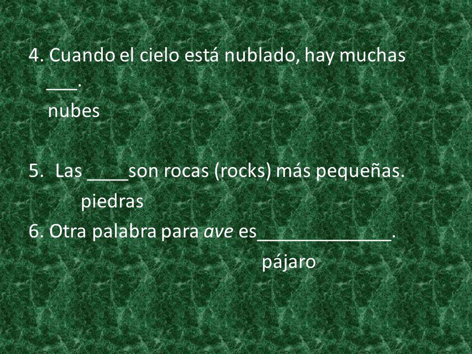 4. Cuando el cielo está nublado, hay muchas ___. nubes 5.Las ____son rocas (rocks) más pequeñas. piedras 6. Otra palabra para ave es_____________. páj