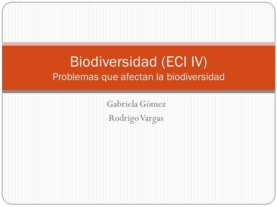 Gabriela Gómez Rodrigo Vargas Biodiversidad (ECI IV) Problemas que afectan la biodiversidad