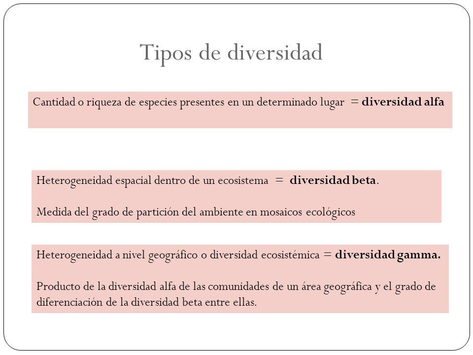 Tipos de diversidad Heterogeneidad espacial dentro de un ecosistema = diversidad beta. Medida del grado de partición del ambiente en mosaicos ecológic