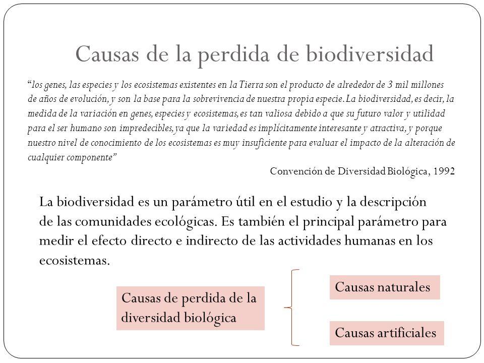 Causas de la perdida de biodiversidad Causas naturales Causas artificiales La biodiversidad es un parámetro útil en el estudio y la descripción de las