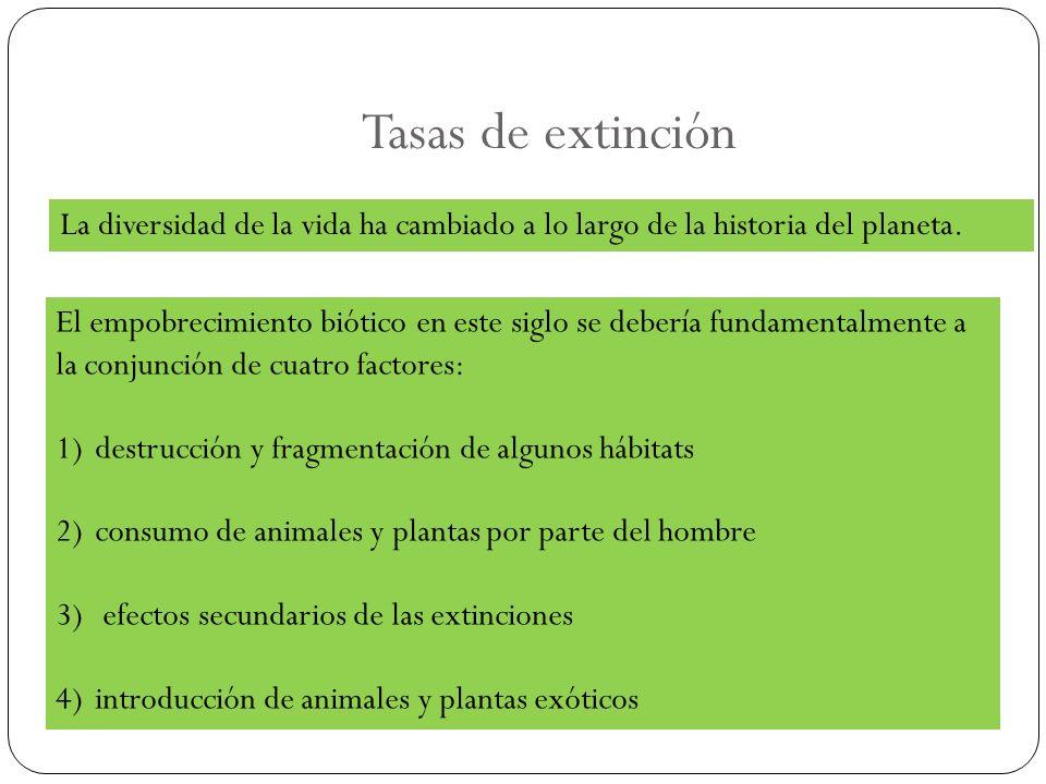 Tasas de extinción El empobrecimiento biótico en este siglo se debería fundamentalmente a la conjunción de cuatro factores: 1)destrucción y fragmentac