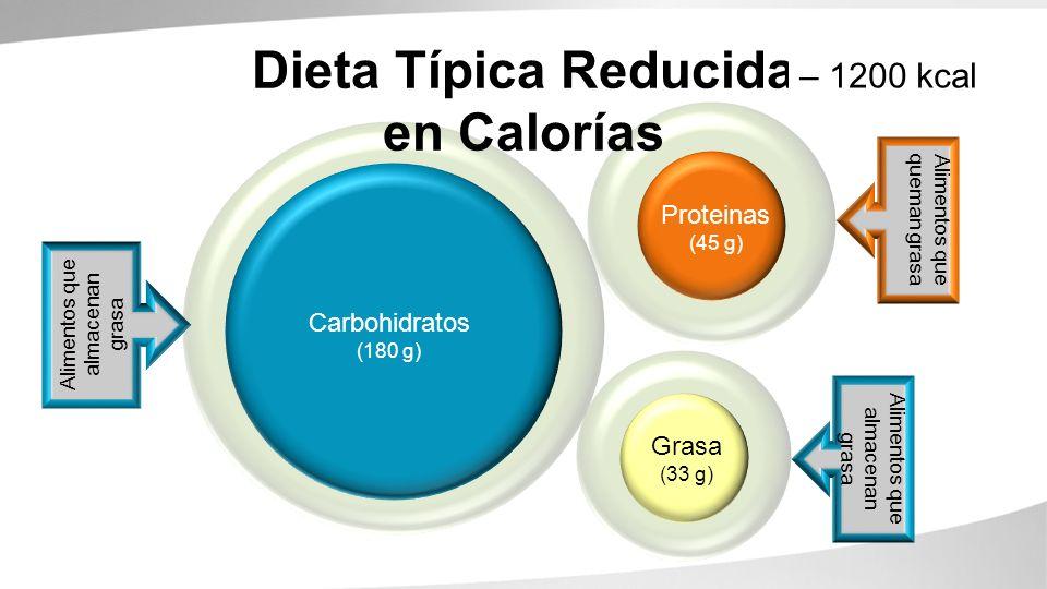 Carbohydrates (260g) Proteins (90g) Fats (67g) Dieta Típica Reducida en Calorías Alimentos que queman grasa Alimentos que almacenan grasa Carbohidrato