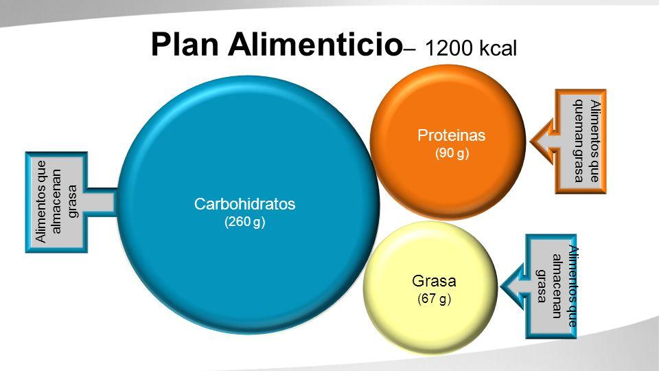 Carbohydrates (260g) Fats (67g) Proteins (90g) Plan Alimenticio – 1200 kcal Alimentos que queman grasa Alimentos que almacenan grasa Proteinas (90 g)