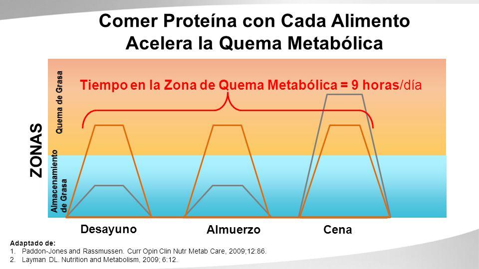 Comer Proteína con Cada Alimento Acelera la Quema Metabólica Almacenamiento de Grasa Quema de Grasa Adaptado de: 1.Paddon-Jones and Rassmussen. Curr O