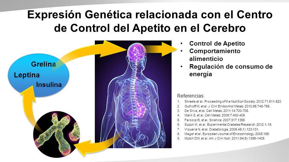 Grelina Leptina Insulina Referencias: Expresión Genética relacionada con el Centro de Control del Apetito en el Cerebro Control de Apetito Comportamie