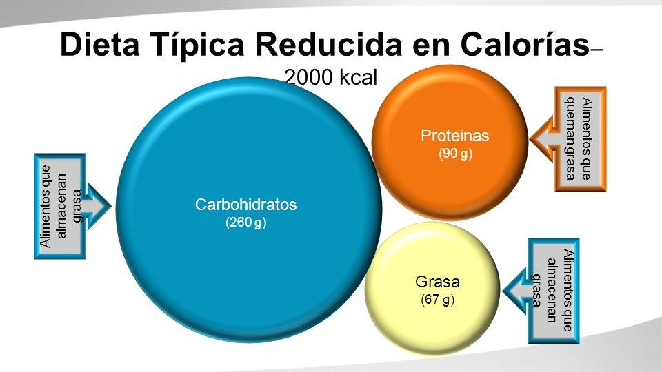 Carbohydrates (260g) Proteins (90g) Fats (67g) Dieta Típica Reducida en Calorías Alimentos que queman grasa Alimentos que almacenan grasa Carbohidratos (180 g) – 1200 kcal Grasa (33 g) Proteinas (45 g)