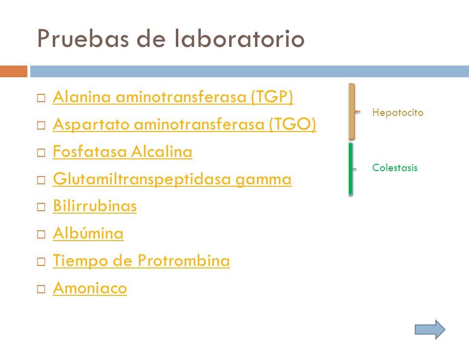 Pruebas de laboratorio Alanina aminotransferasa (TGP) Aspartato aminotransferasa (TGO) Fosfatasa Alcalina Glutamiltranspeptidasa gamma Bilirrubinas Albúmina Tiempo de Protrombina Amoniaco Hepatocito Colestasis