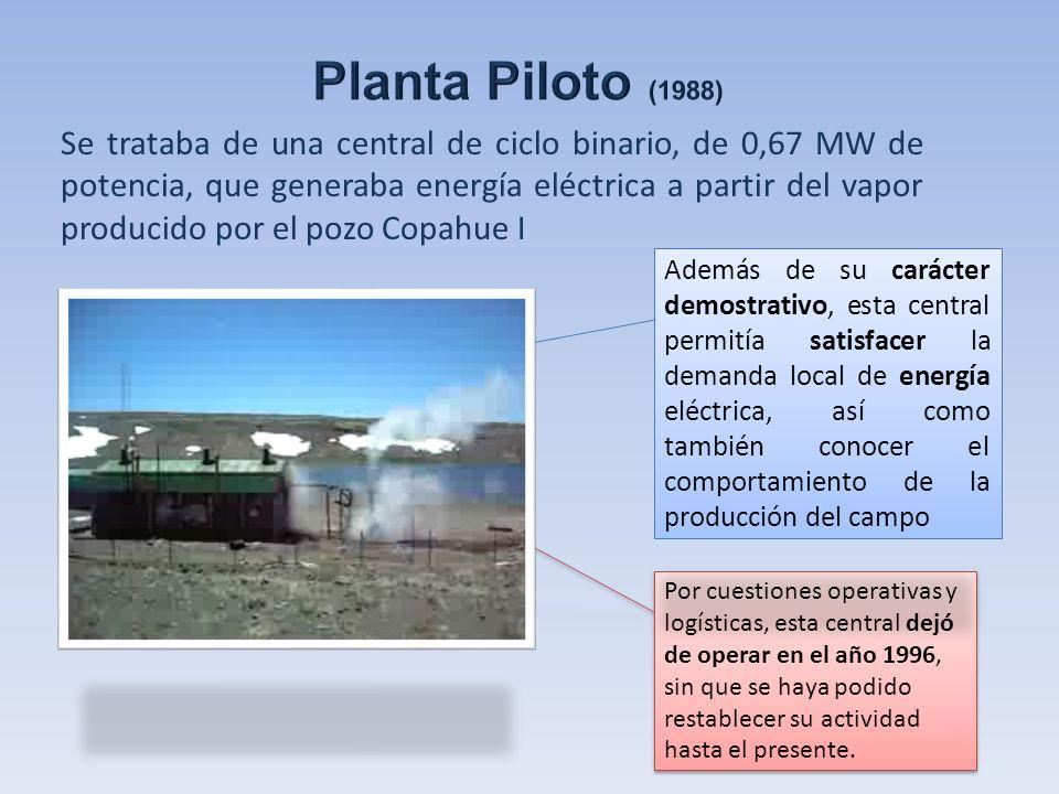 Se trataba de una central de ciclo binario, de 0,67 MW de potencia, que generaba energía eléctrica a partir del vapor producido por el pozo Copahue I