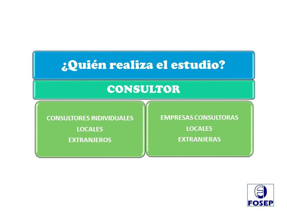 ¿Quién realiza el estudio? CONSULTOR CONSULTORES INDIVIDUALES LOCALES EXTRANJEROS EMPRESAS CONSULTORAS LOCALES EXTRANJERAS