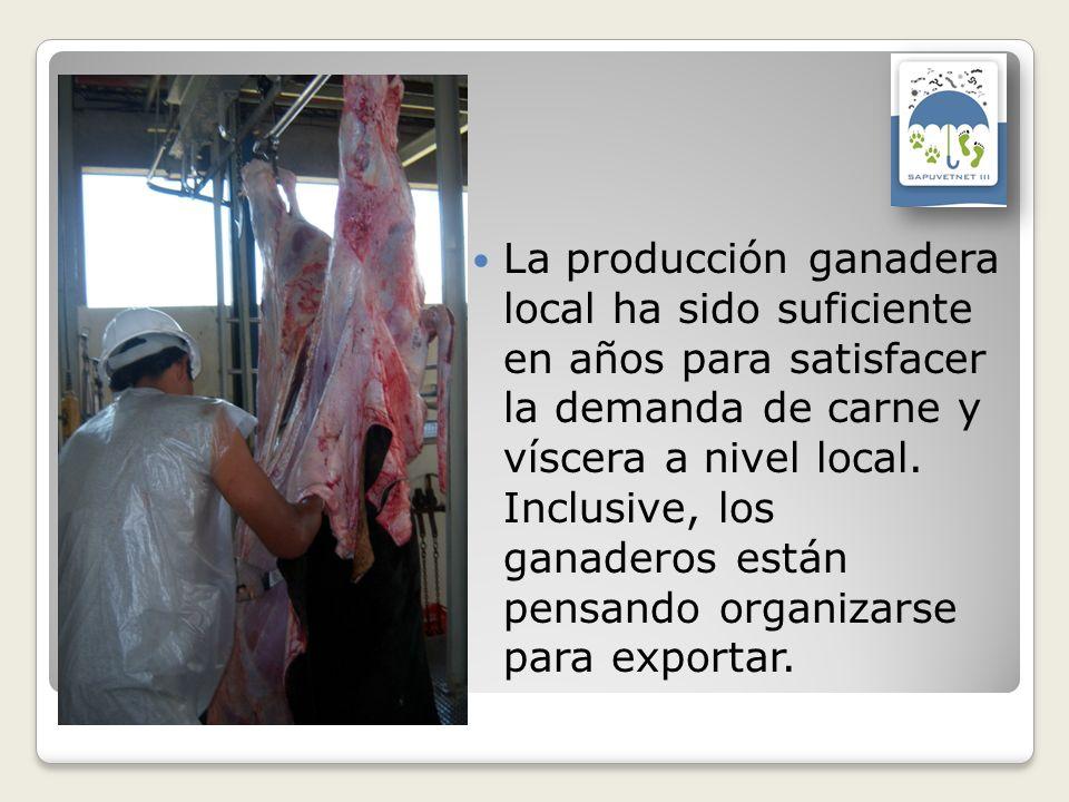 La producción ganadera local ha sido suficiente en años para satisfacer la demanda de carne y víscera a nivel local. Inclusive, los ganaderos están pe