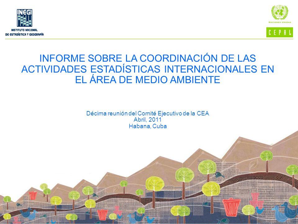 INFORME SOBRE LA COORDINACIÓN DE LAS ACTIVIDADES ESTADÍSTICAS INTERNACIONALES EN EL ÁREA DE MEDIO AMBIENTE Décima reunión del Comité Ejecutivo de la C