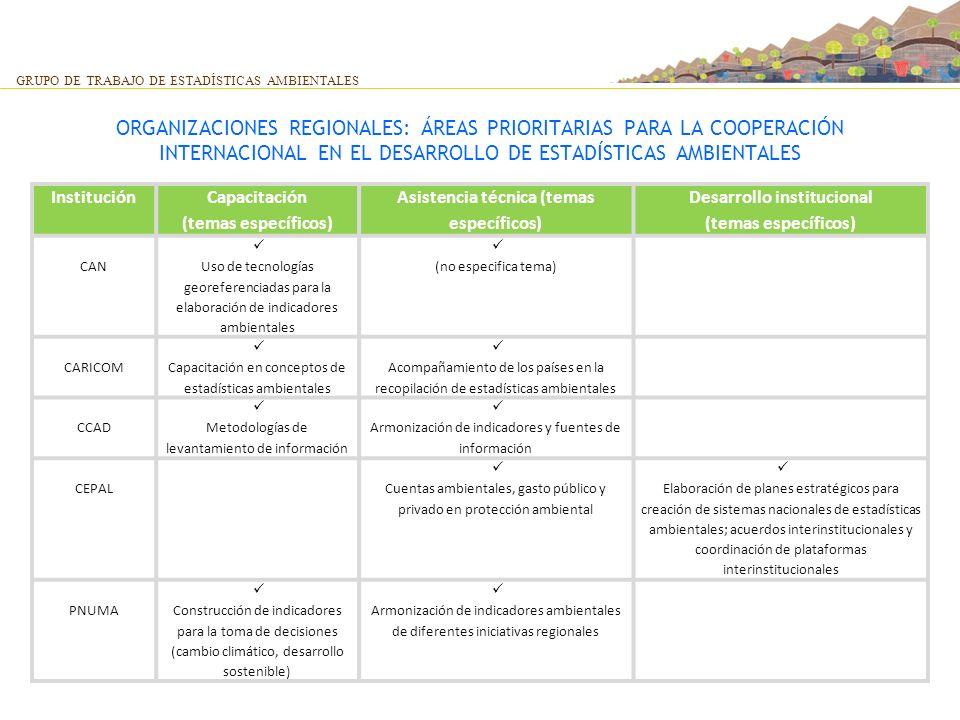 ORGANIZACIONES REGIONALES: ÁREAS PRIORITARIAS PARA LA COOPERACIÓN INTERNACIONAL EN EL DESARROLLO DE ESTADÍSTICAS AMBIENTALES GRUPO DE TRABAJO DE ESTAD