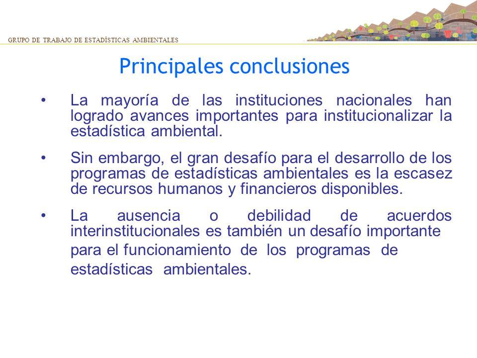 Principales conclusiones La mayoría de las instituciones nacionales han logrado avances importantes para institucionalizar la estadística ambiental. S