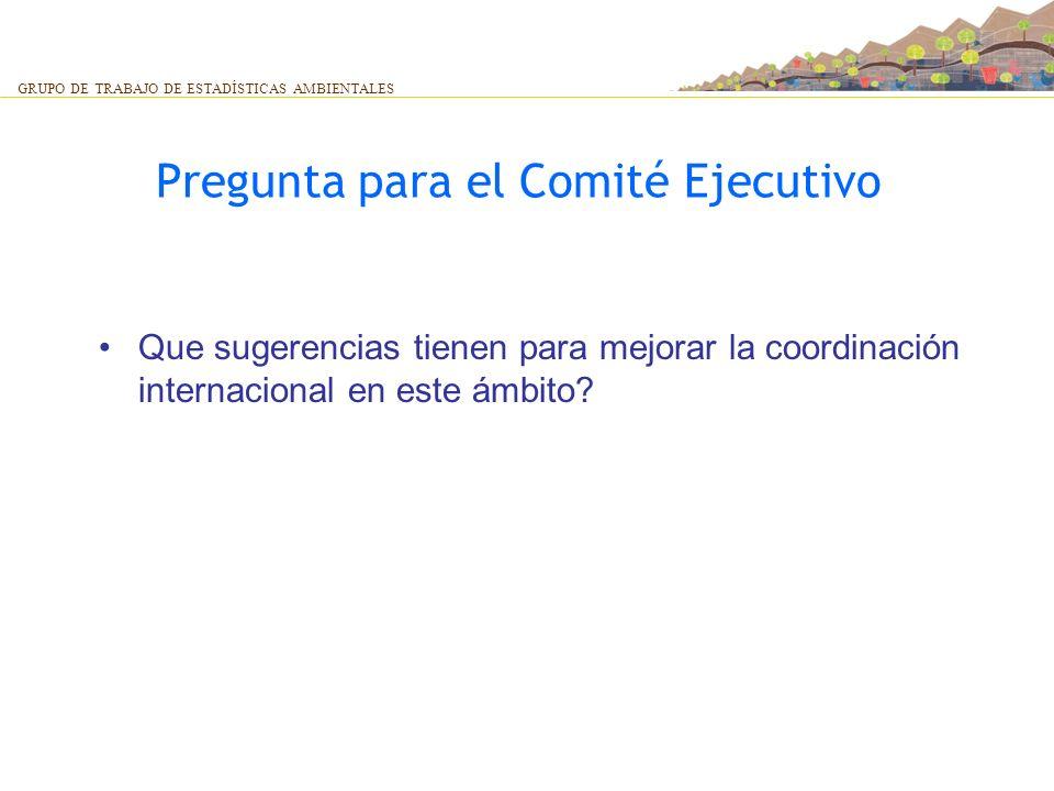 Pregunta para el Comité Ejecutivo Que sugerencias tienen para mejorar la coordinación internacional en este ámbito? GRUPO DE TRABAJO DE ESTADÍSTICAS A