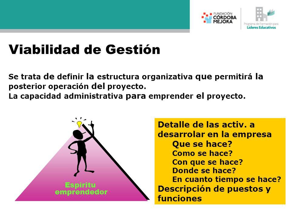 Se trata de definir la estructura organizativa que permitirá la posterior operación del proyecto. La capacidad administrativa para emprender el proyec
