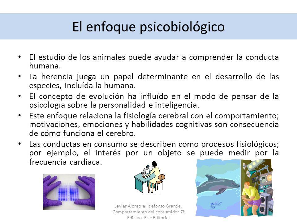 El enfoque psicobiológico El estudio de los animales puede ayudar a comprender la conducta humana. La herencia juega un papel determinante en el desar