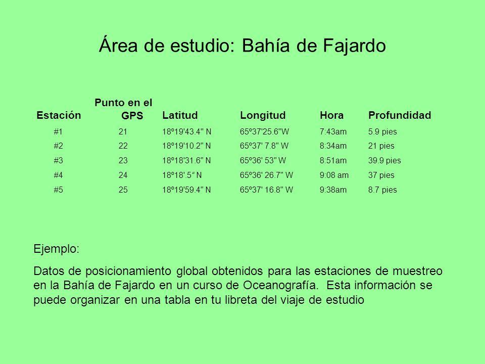 Estación Punto en el GPSLatitudLongitudHoraProfundidad #12118º19'43.4'' N65º37'25.6
