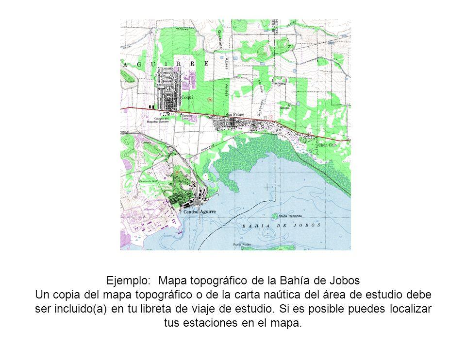 Ejemplo: Mapa topográfico de la Bahía de Jobos Un copia del mapa topográfico o de la carta naútica del área de estudio debe ser incluido(a) en tu libr