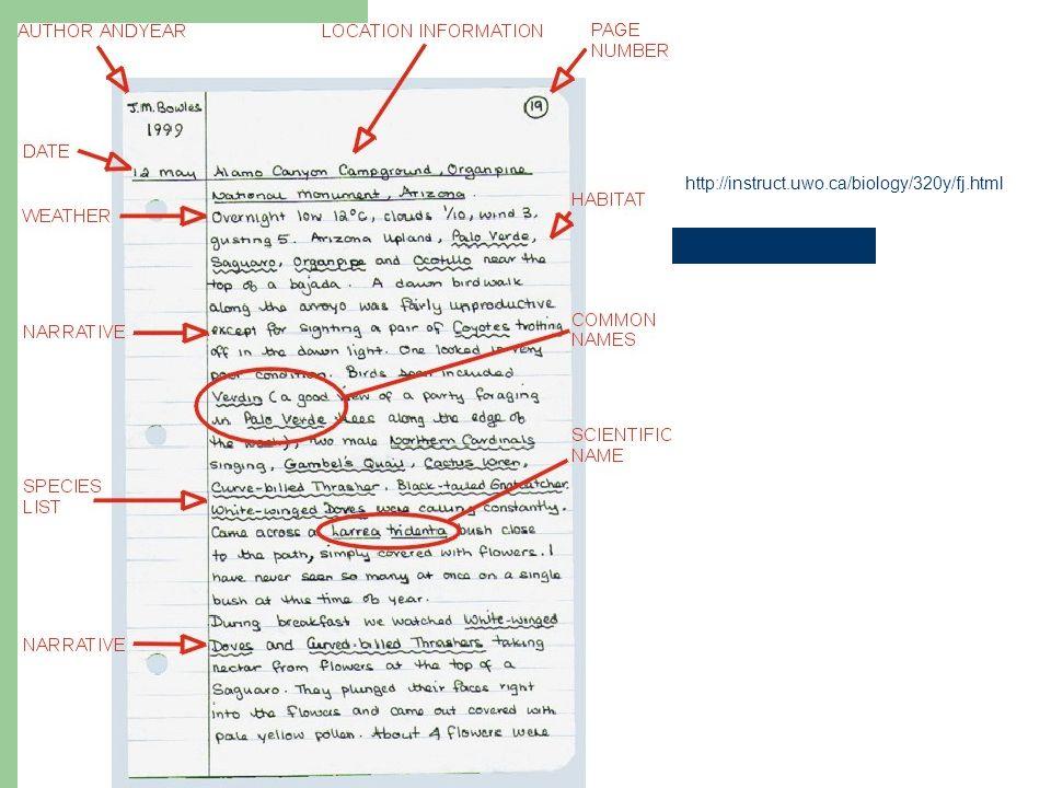 http://instruct.uwo.ca/biology/320y/fj.html
