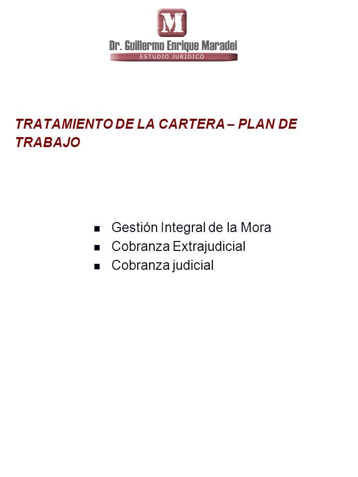 TRATAMIENTO DE LA CARTERA – PLAN DE TRABAJO Gestión Integral de la Mora Cobranza Extrajudicial Cobranza judicial