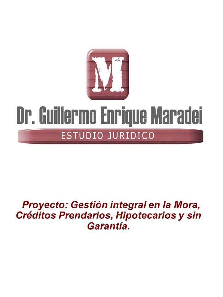 Proyecto: Gestión integral en la Mora, Créditos Prendarios, Hipotecarios y sin Garantía.